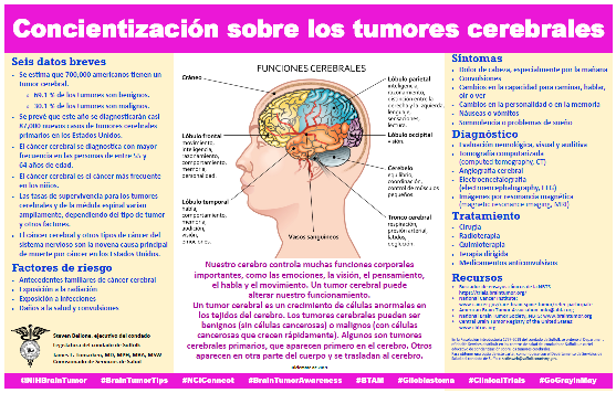 Brain Tumor Awareness Spanish Flyer
