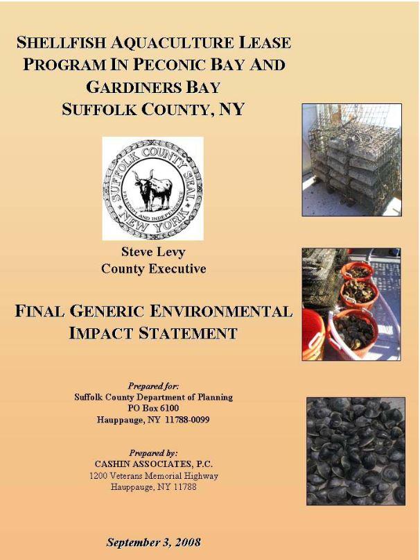 Final Generic Environmental Impact Statement cover