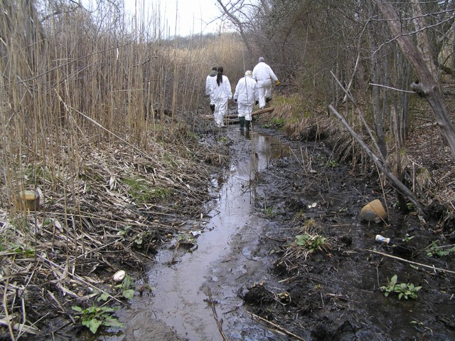 image 28 - a small stream runs through dry reeds and trees, workers walk along the stream