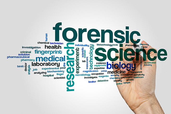 Medical Forensic Section